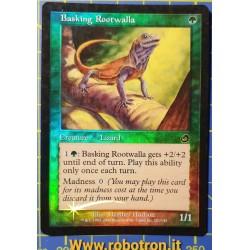 Basking Rootwalla - ENG EX...